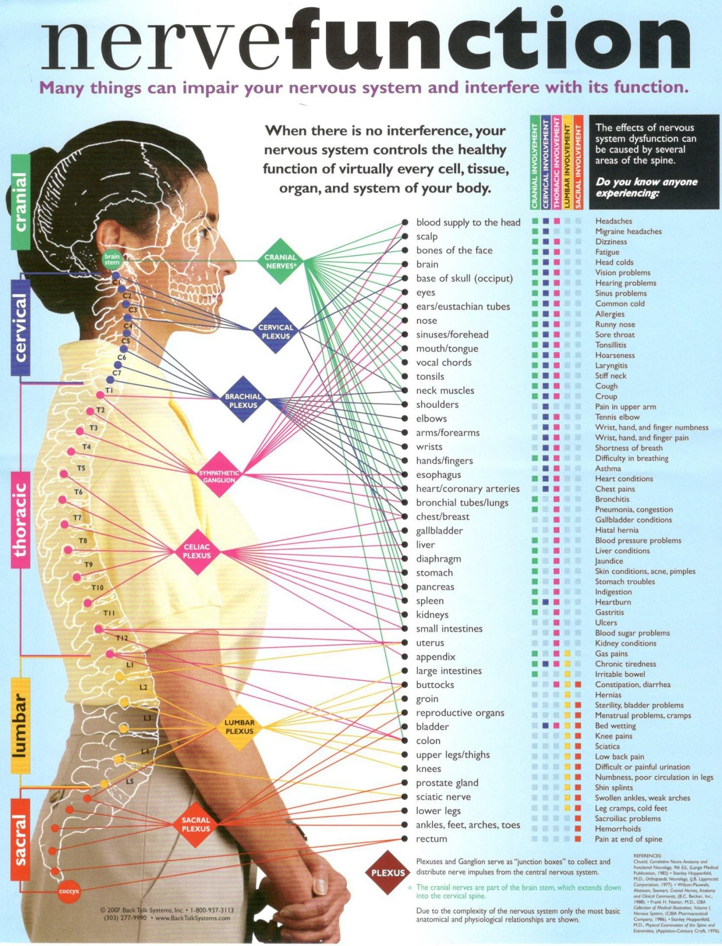 Whos Checking Your Breaker Box Dr Christine Hoch 1 Spinal Bones Work Something Like Electrical Breakers In A At Each Vertebral Level There Are Pair Of Nerves Coming Branching Off The